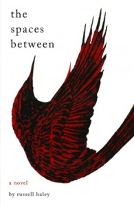 The Spaces Between (cover, featuring 'The Painted Bird' by Shane Cotton)